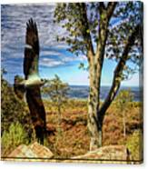 Double Exposure Osprey And High Point Nj Canvas Print