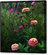 Double Framed Floral Canvas Print