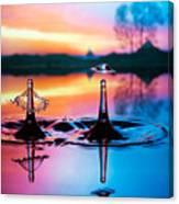 Double Liquid Art Canvas Print
