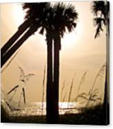 Double Palms Canvas Print