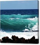 Double Waves Canvas Print