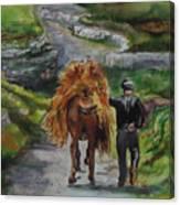 Down A Country Lane Canvas Print