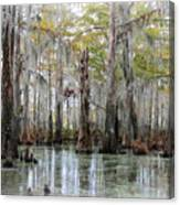 Down On The Bayou - Digital Painting Canvas Print