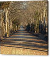 Down The Gravel Road Canvas Print