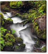 Downstream From The Waterfalls Canvas Print