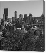 Downtown Pittsburgh In Black And White Canvas Print