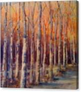 Dowry Trees Canvas Print
