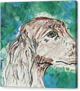 Doxie Blues Canvas Print