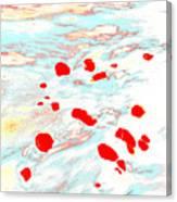 Dp Stone Impressions 24 Canvas Print