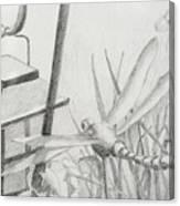 Dragon Fly And Lantern Canvas Print