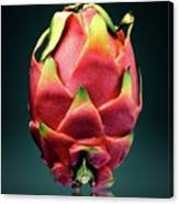Dragon Fruit Or Pitaya  Canvas Print