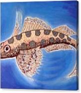 Dragonet Fish Canvas Print