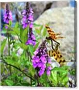 Dragonflies In Summer Canvas Print