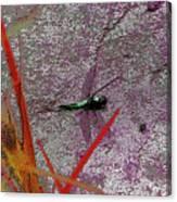 Dragonfly 3 Canvas Print
