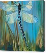 Dragonfly Fantasy Canvas Print