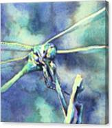 Dragonfly II Canvas Print