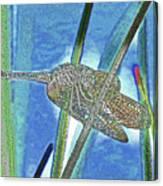 dragonfly Interior Canvas Print