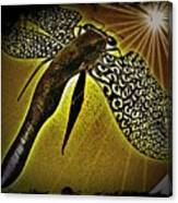 Dragonfly V Canvas Print