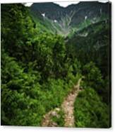 Dramatic Mountain Landscape With Distinctive Green Canvas Print