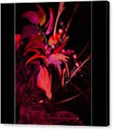 Dramatic Red Flowers Canvas Print