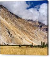Drass Village Agriculture Kargil Ladakh Jammu And Kashmir India Canvas Print
