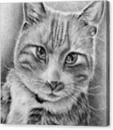 Drawing Of A Cat In Black And White Canvas Print