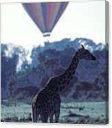 Dream Adventure In Kenya Canvas Print