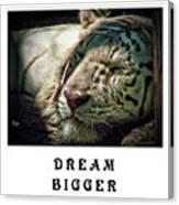 Dream Bigger Canvas Print