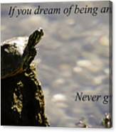 Dream Of Being An Eagle Canvas Print