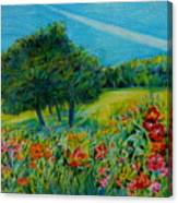 Dreaming About Summer Canvas Print