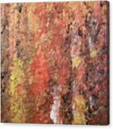 Dreaming In Fall Colors Canvas Print