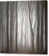 Dreamscape Forest Canvas Print