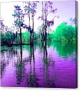 Dreamy Bayou Sorrel Canvas Print