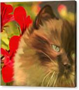 Dreamy Cat With Geranium 2015 Canvas Print