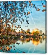 Dreamy Jefferson And Flowers Canvas Print