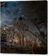 Dreamy Reflections Canvas Print