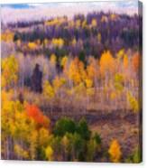 Dreamy Rocky Mountain Autumn View Canvas Print