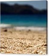 Dreamy Shell Beach Canvas Print