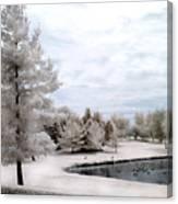 Dreamy Surreal Infrared Pond Landscape Nature Scene  Canvas Print
