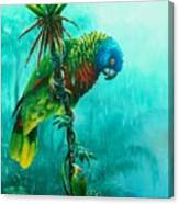 Drenched - St. Lucia Parrot Canvas Print