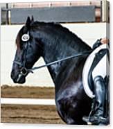 Dressage Horse Show Canvas Print