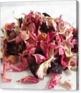 Dried Organic Carnation Petals Canvas Print