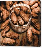 Dried Whole Peanuts In Their Seedpods Canvas Print