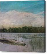 Drifting Downstream Canvas Print