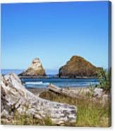 Driftwood And Rocks Canvas Print