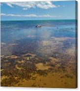 Driftwood At Low Tide In Key West Canvas Print