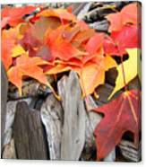 Driftwood Autumn Leaves Art Prints Baslee Troutman Canvas Print