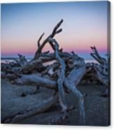Driftwood Beach 1 Canvas Print
