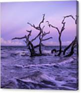 Driftwood In The Waves Canvas Print
