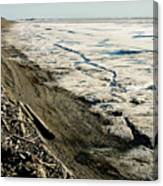 Driftwood On The Frozen Arctic Coast Canvas Print
